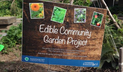 Edible Community Garden Project Sign